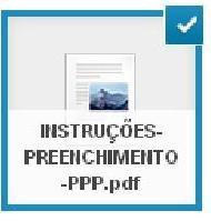 Instruções para preenchimento do PPP