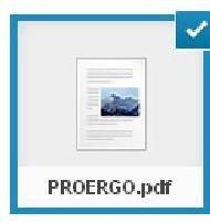 PROERGO – Programa de Ergonomia